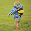Gyerek hátizsák LittleLife Toddler Bee