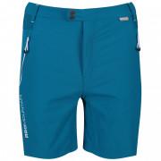 Pánské kraťasy Regatta Mountain Shorts kék