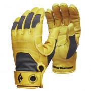 Férfi kesztyű Black Diamond Transition Gloves