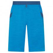 Pánské kraťasy La Sportiva Force Short M kék
