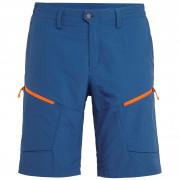 Férfi rövidnadrág Salewa Puez Dry M Shorts kék