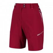 Dámské kraťasy Regatta Mountain Shorts piros