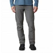 Pánské kalhoty Columbia Silver Ridge™ II Cargo Pant szürke