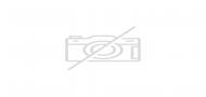 Bridgedale